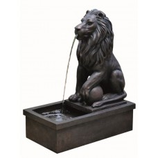 Sitting Lion by Pool